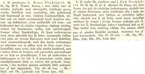 Nordström, Wahlgren & Tullgren, Svenska Fjärilar (1941)